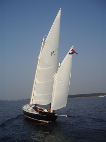 Best shallow draft sailboat under 32 feet? - Page 2